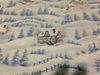 Snowflake fabric giveaway